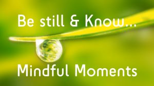 "Screenshot of online video prayer series ""Be Still and Know... Mindful Moments"""