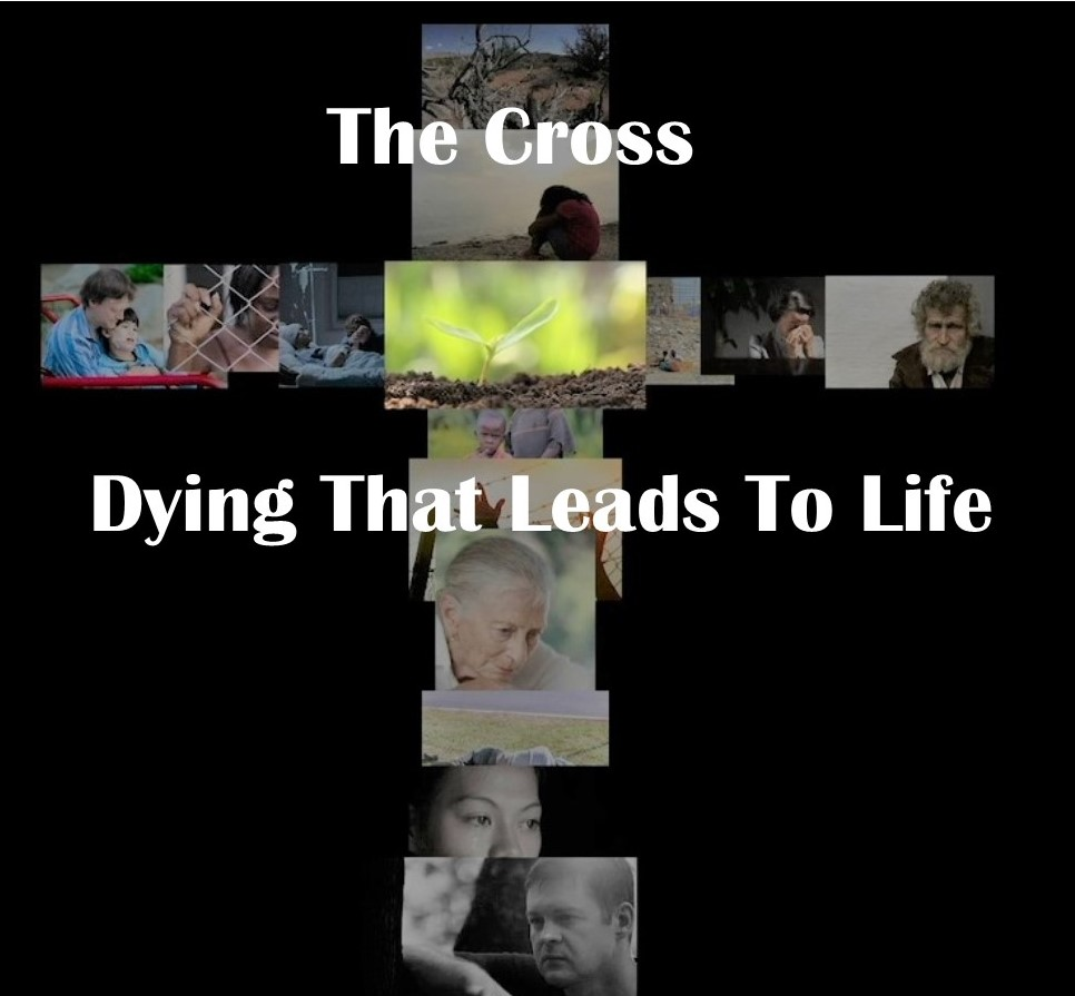 "Screen shot of online video series ""The Cross - Dying That Leads To Life"" with Michael Whelan"